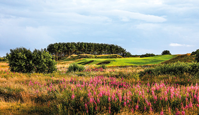 DUNDONALD LINKS GOES GREEN AS IT OPENS DOOR TO NATURE